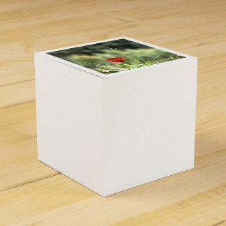 One Poppy Favor Box