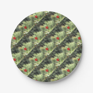 One Poppy Paper Plate
