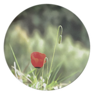 One Poppy Plate