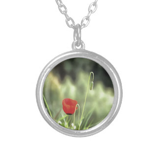 One Poppy Silver Plated Necklace