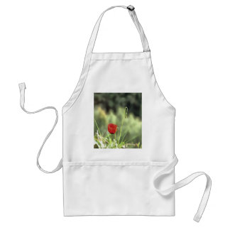 One Poppy Standard Apron