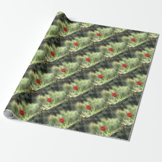 One Poppy Wrapping Paper