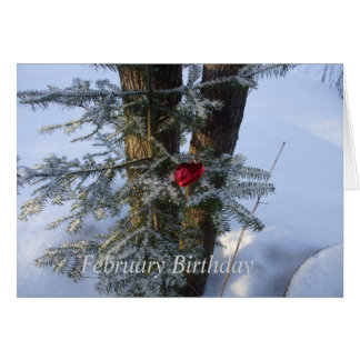 One Red Heart on Pine Branch Card