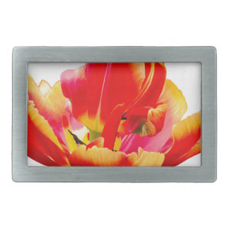 One red tulip flower on white background belt buckles