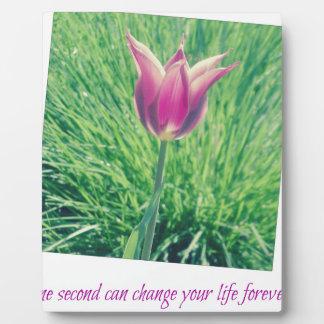 one second can change your life forever plaque