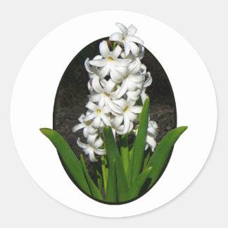 One White Hyacinth Classic Round Sticker