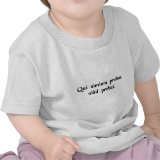 One who proves too much, proves nothing. tees