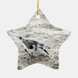 One Young Snowy Plover Bird Ceramic Ornament