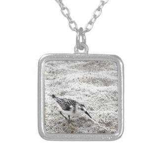 One Young Snowy Plover Bird Silver Plated Necklace