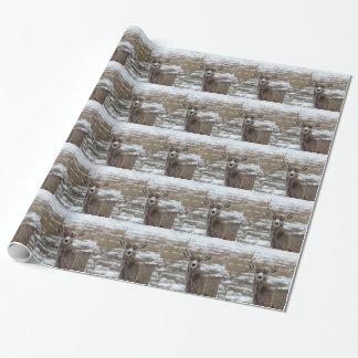 OneAntlerDeer.jpg Wrapping Paper