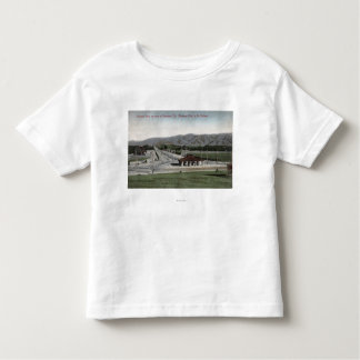Oneonta Park & Raymond Hotel T-shirts