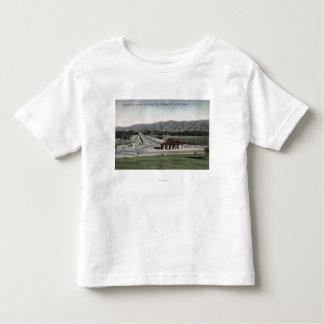 Oneonta Park & Raymond Hotel Toddler T-shirt