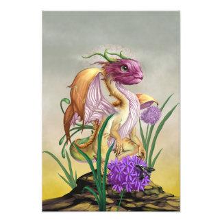 Onion Dragon 13x19 Print
