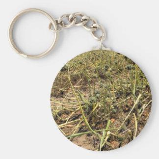 Onion Field Landscape Basic Round Button Keychain