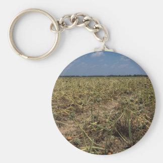 Onion Field Landscape in Georgia Basic Round Button Keychain