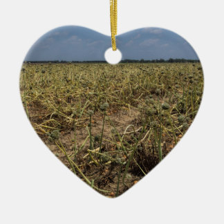 Onion Field Landscape in Georgia Ceramic Heart Ornament