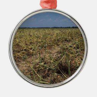 Onion Field Landscape in Georgia Silver-Colored Round Ornament