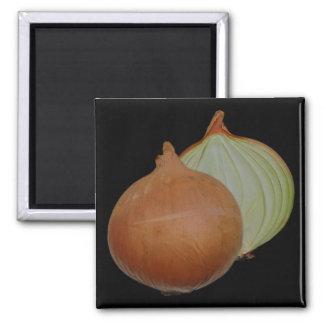 Onion magnet