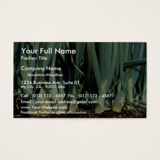 Onions, Grand Bend, Ontario, Canada Business Card