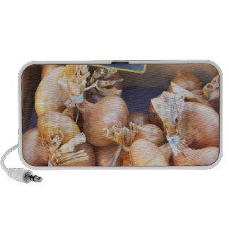 Onions, o.50 euro per bunch, for sale at a mini speaker