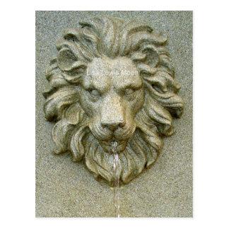 Online Fountain Lion Postcard