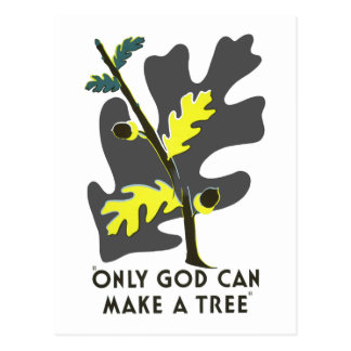 Only God Can Make a Tree Postcard