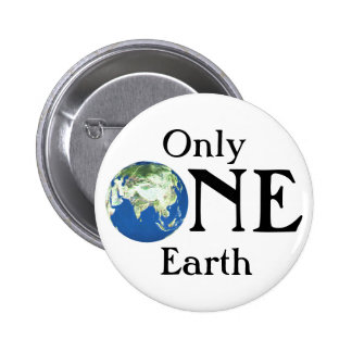 Only one Earth Pinback Button