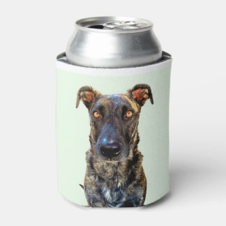 Only One in Dog Beers Can Cooler