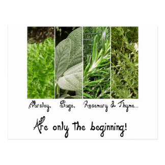 Only the Beginning Postcard