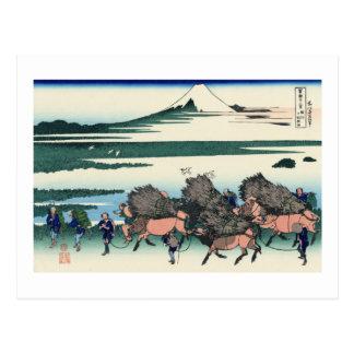 Ōno Shinden in the Suruga Province Postcard