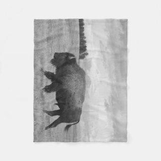 """""""Onward"""" Buffalo Blanket"""