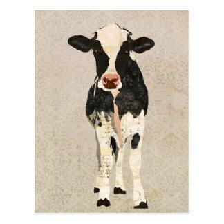 Onyx Ivory Cow Postcard