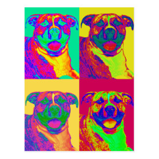 Op Art Pitbull Postcard