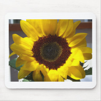 Open Sunflower Mouse Pad