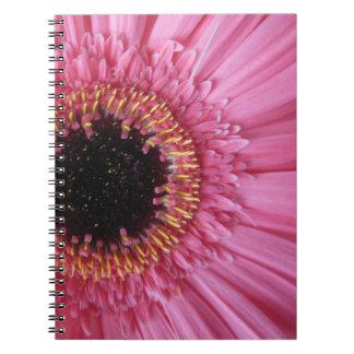 Open Up Notebook