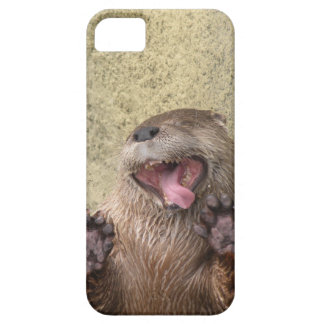 Open Wide! Otter iPhone 5 Case