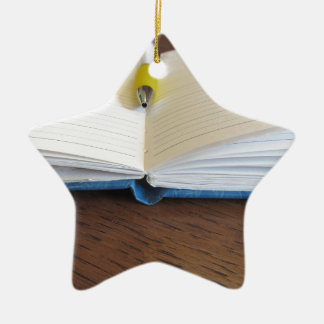 Opened blank lined notebook with pen ceramic star ornament