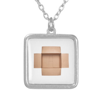 Opened corrugated cardboard box silver plated necklace