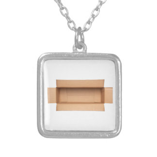 Opened retangular cardboard box silver plated necklace