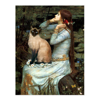 Ophelia - Seal Point Siamese Cat Postcard
