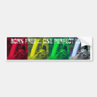 OPL Rasta Colors Bumper Sticker