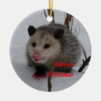 Opossum Ceramic Ornament