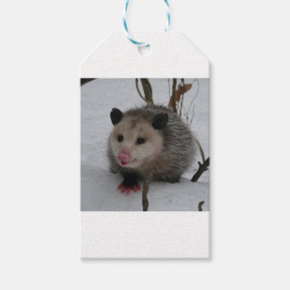 Opossum Pack Of Gift Tags