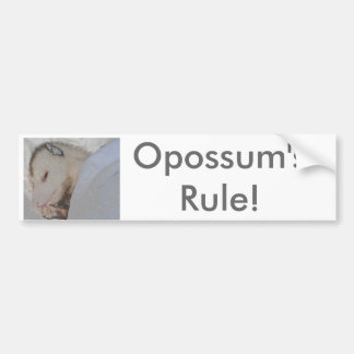 Opossum's Rule! Bumper Sticker