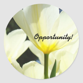 Opportunity! stickwers Boss Manage Office Tulips Round Sticker
