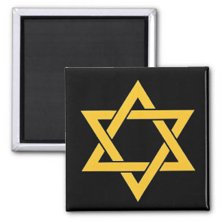 OPUS CHANGEABLE Star of David Magnet