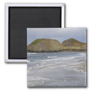 OR, Oregon Coast, Seal Rock State Park, Square Magnet
