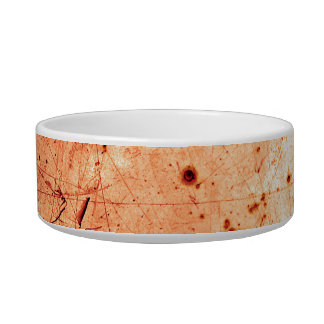 Orange abstract grunge contemporary art cat food bowl