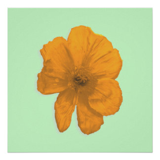 Orange Aid PopArt Flower Print