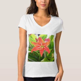 Orange Amaryllis Flower Blooms in Springtime T-Shirt